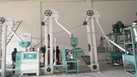 1T/Hour Maize Milling Machine Built in Mozambique