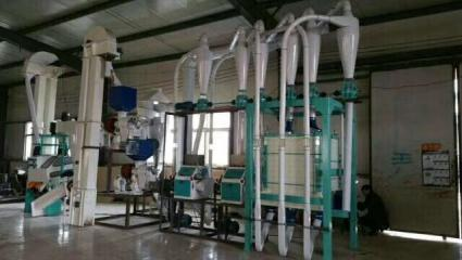 Mozambique 1T/Hour White Maize Flour Milling Line