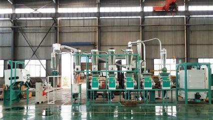 20TPD small scale maize flour mill plant